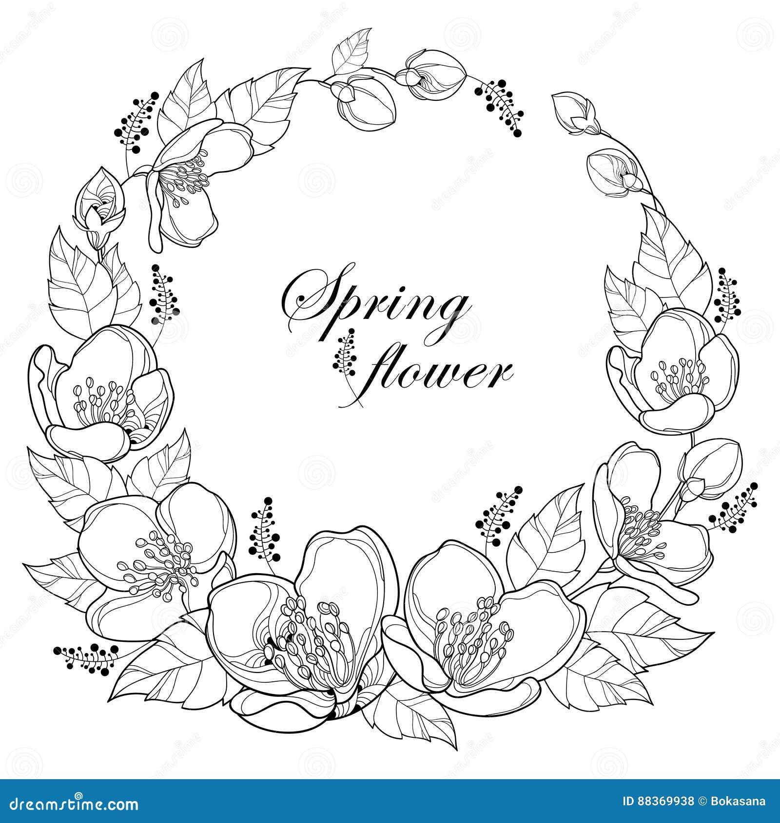 Coloriage Guirlande Fleurs.Dirigez Autour De La Guirlande Avec Les Fleurs Le Bourgeon