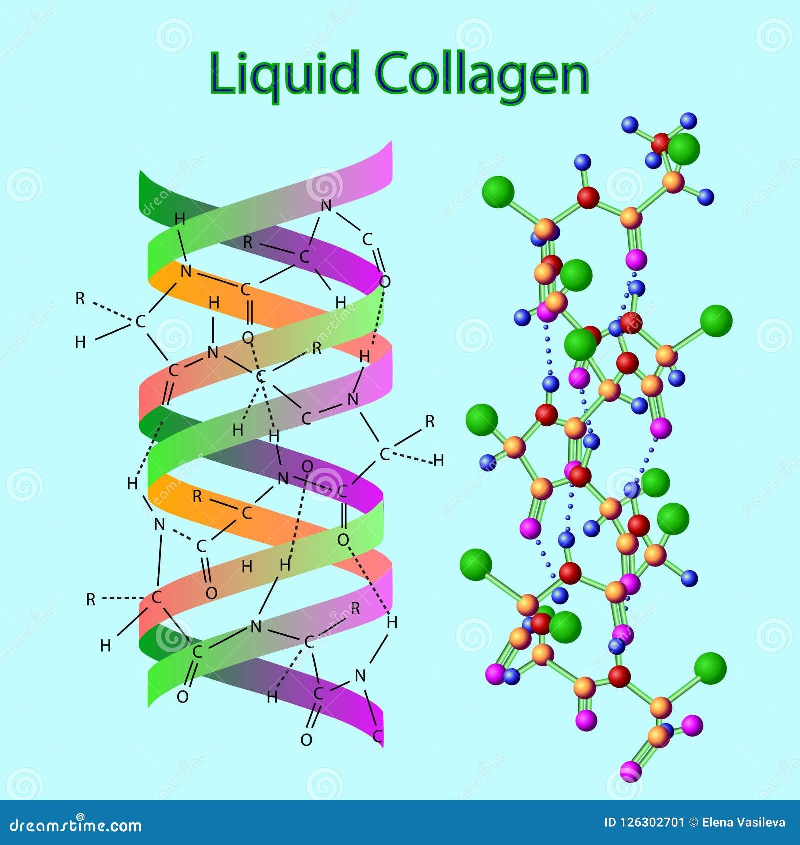 Dirigez l illustration avec la formule de collagène de liqid d isolement sur le bleu-clair