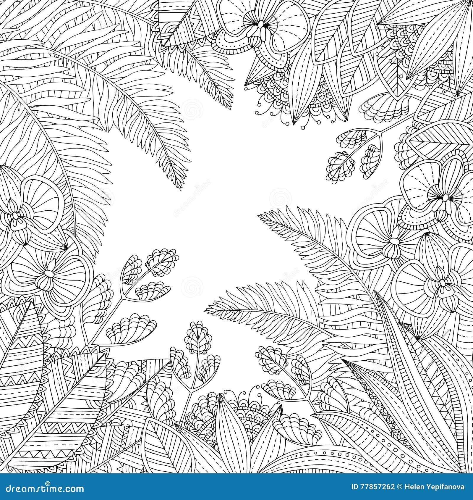 Dirigez L'illustration Tropicale Tirée Par La Main Avec ...