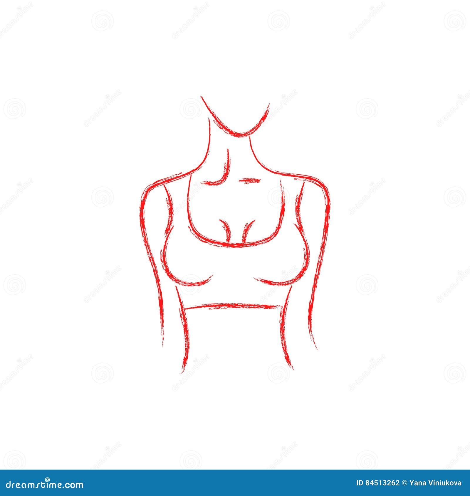 Dirigez l image d un corps du ` s de femme Belle forme Tournez à droite femelle de poitrine Peinture de dessin
