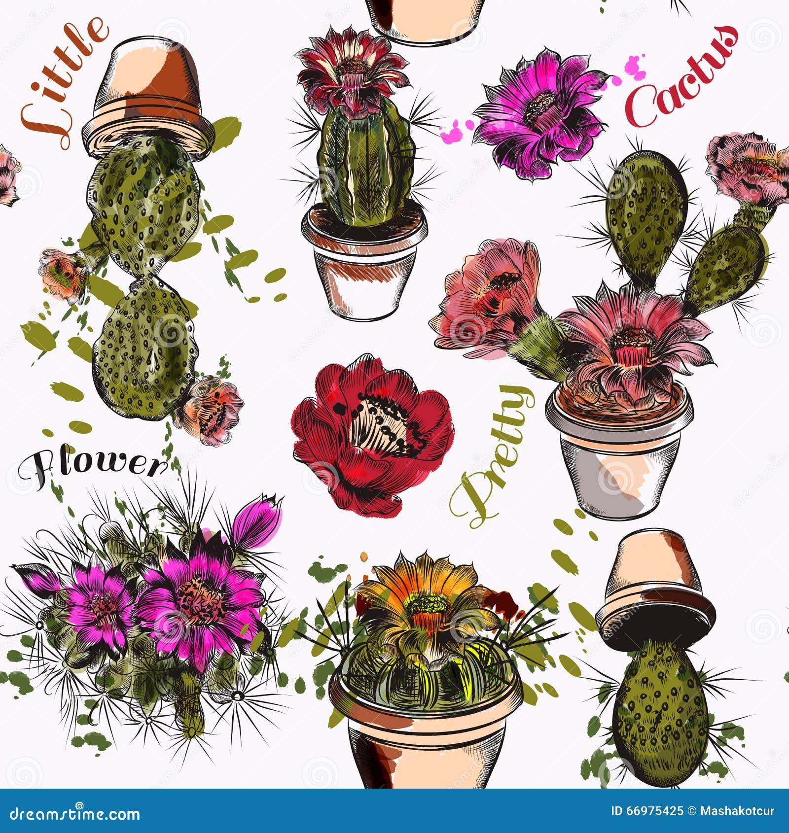 Dirigez Le Modèle De Papier Peint Avec Les Cactus Tirés Par La Main