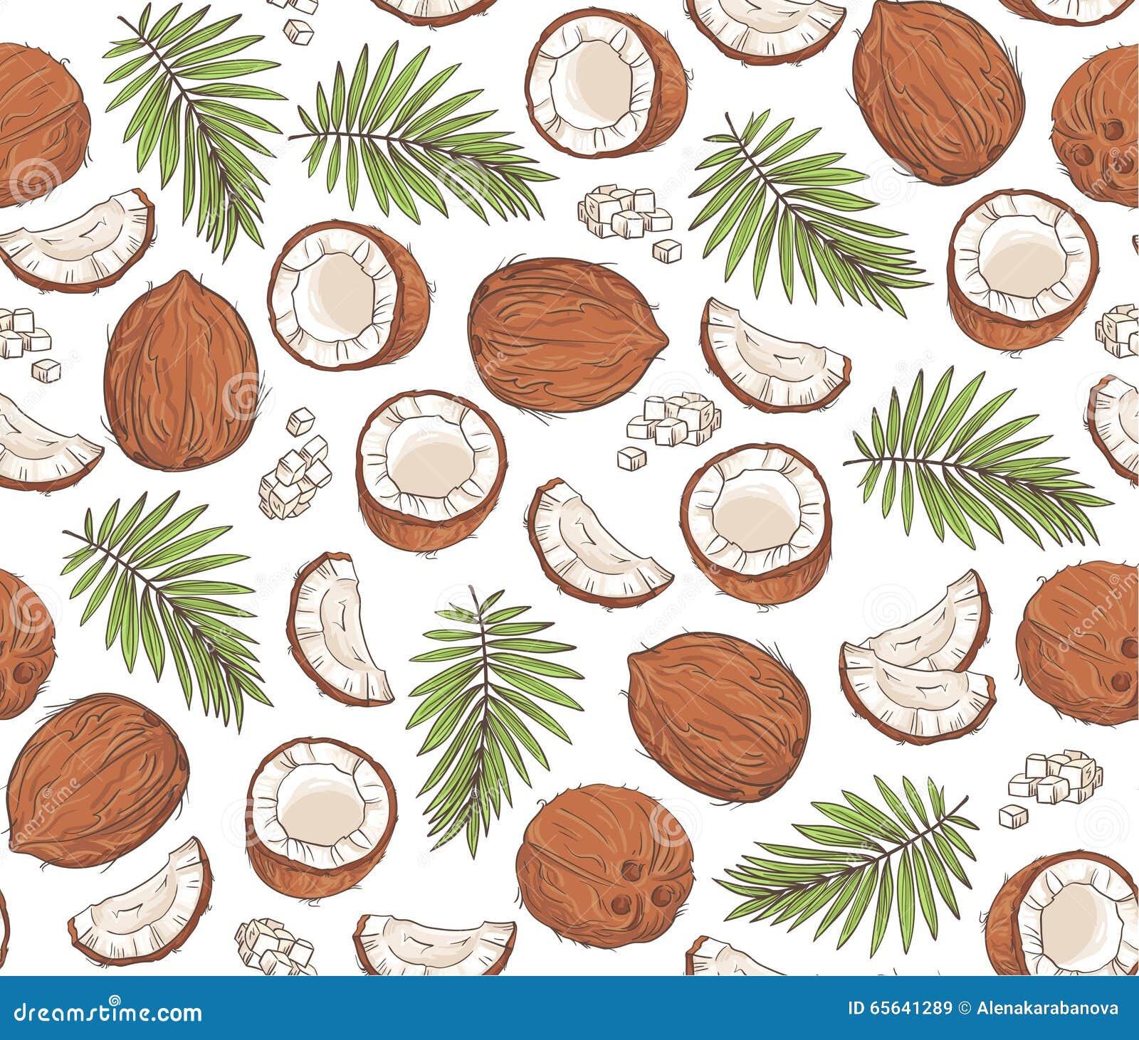 Dirigez le modèle sans couture avec des noix de coco et des feuilles tropicales