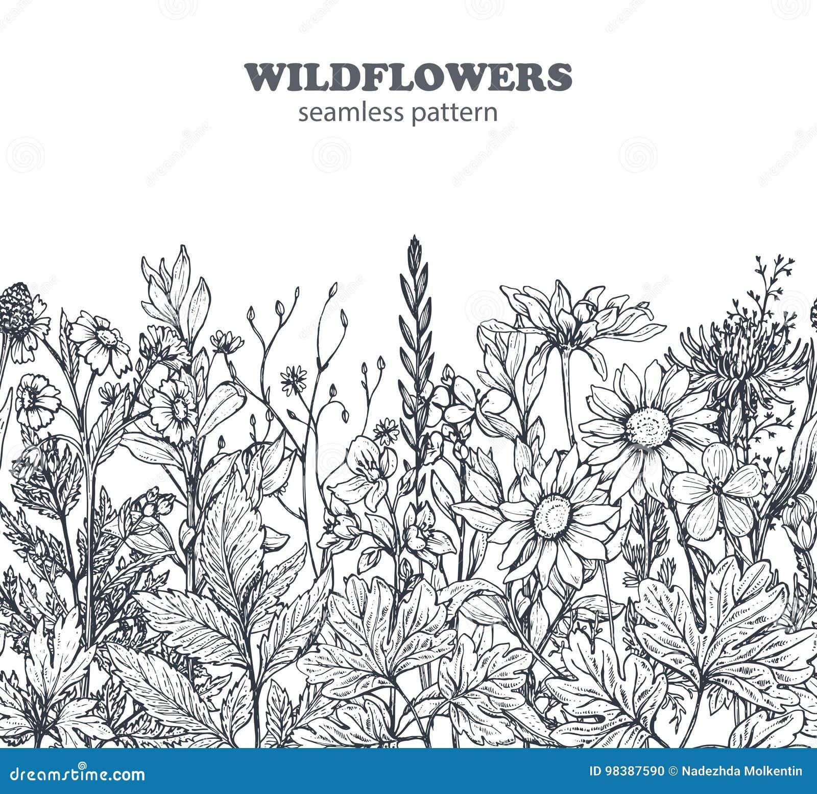 Dirigez le modèle sans couture avec les herbes et les fleurs tirées par la main