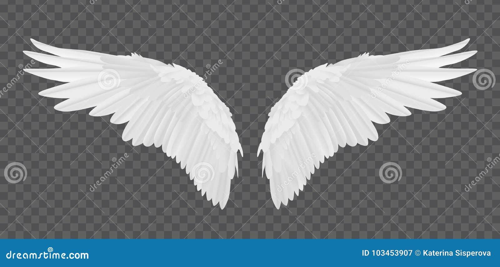 Dirigez les ailes réalistes d ange d isolement sur le fond transparent