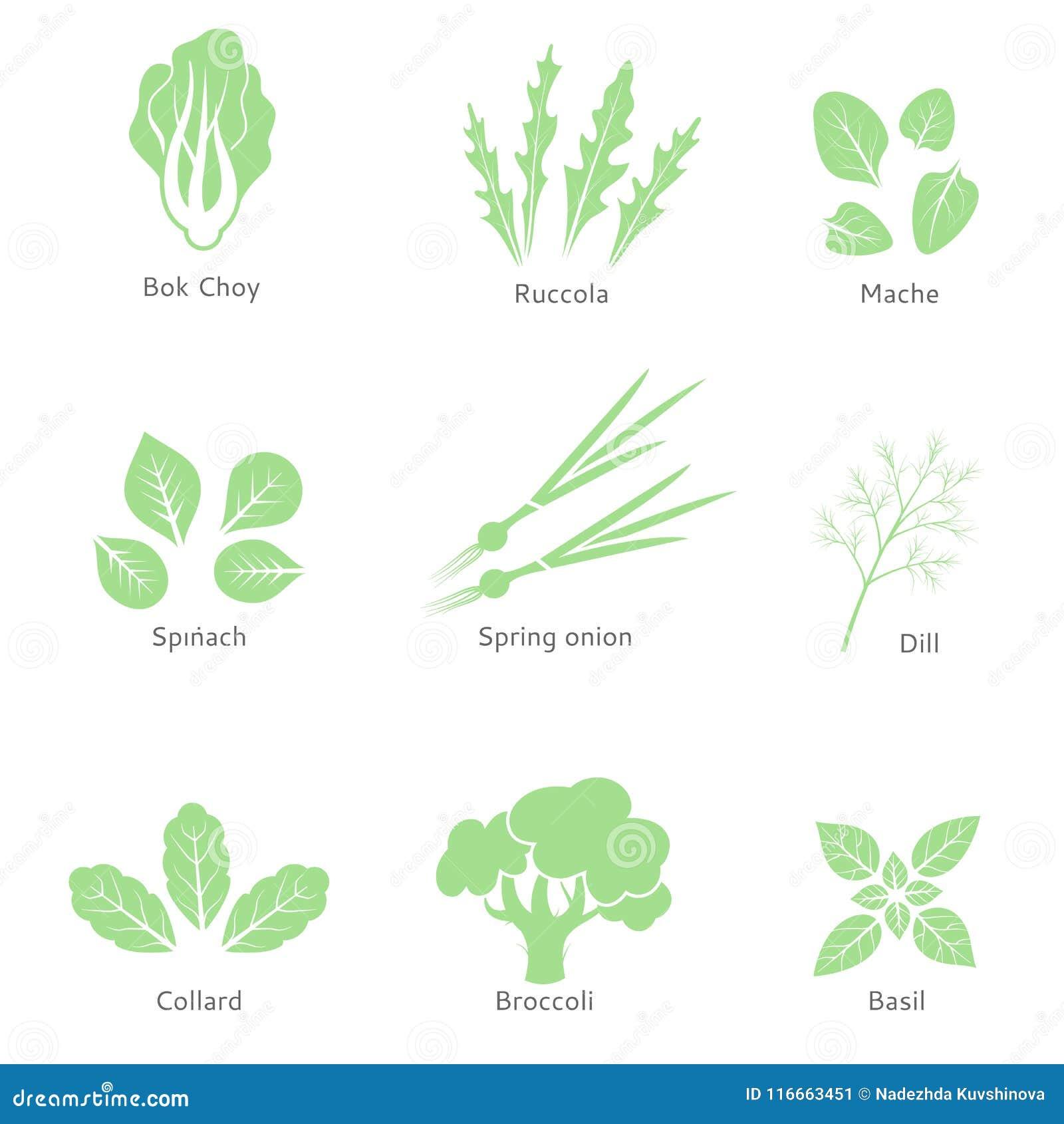 Dirigez Les Logos Ou Les Signes Deco Organiques Bio Comptoir à