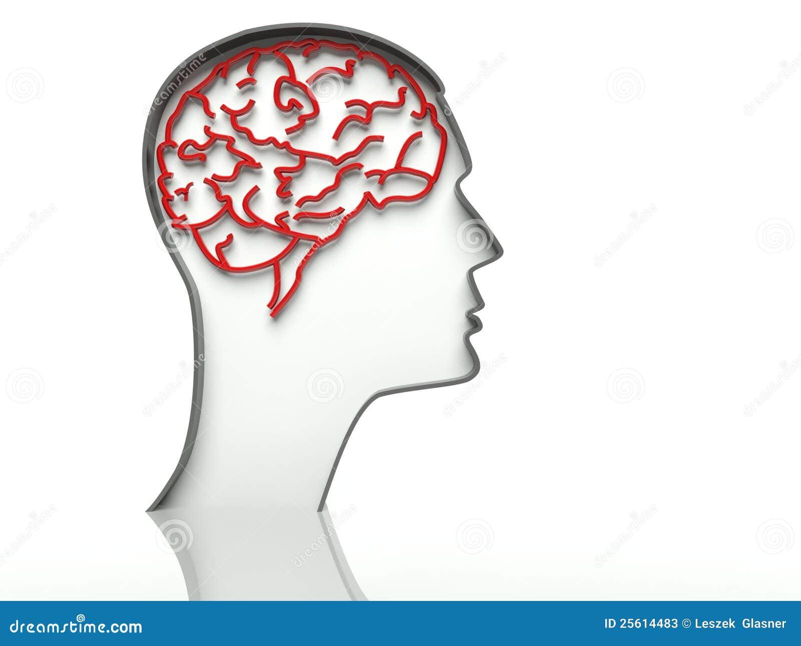 Dirija com o cérebro no fundo branco, espaço do texto