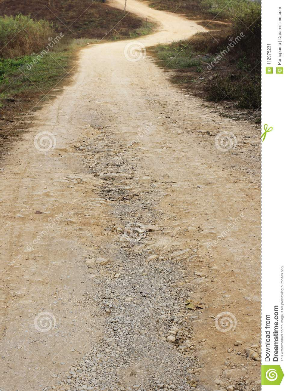 Dirt road through grassland