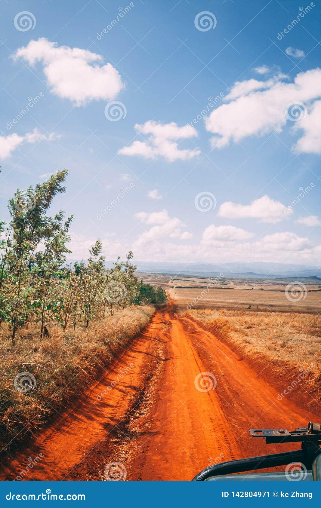Dirt road under big sky