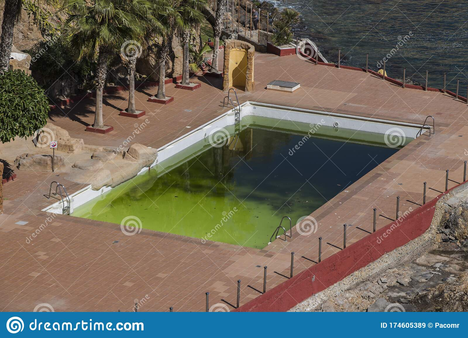 A Dirty And Abandoned Pool With Green Water Scary Pool Dyrty Waterl Abandoned Swimming Pool Ruined Pool Stock Image Image Of Away Rustic 174605389