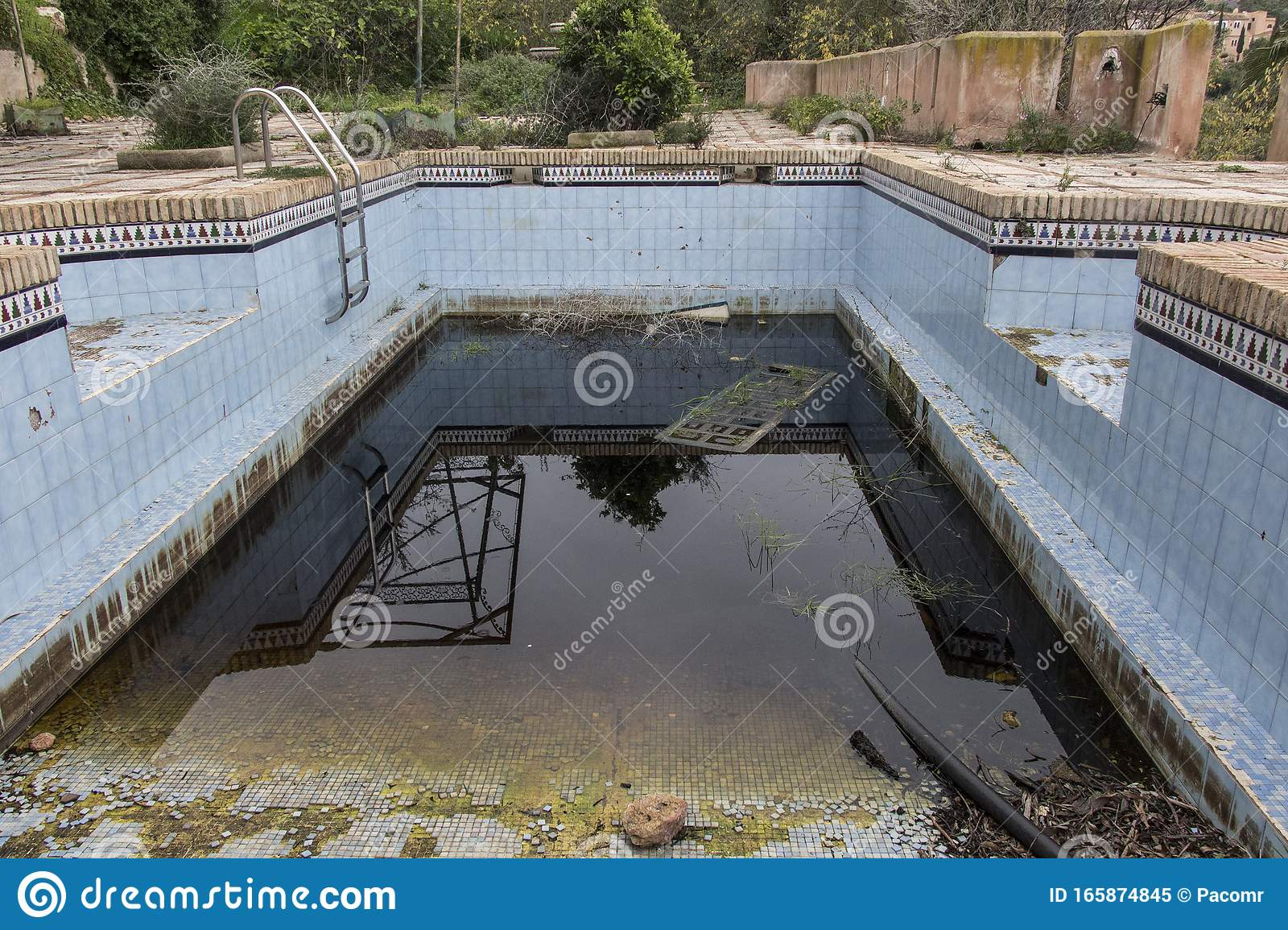 A Dirty And Abandoned Pool With Little Water Stock Image Image Of Grunge Disrepair 165874845