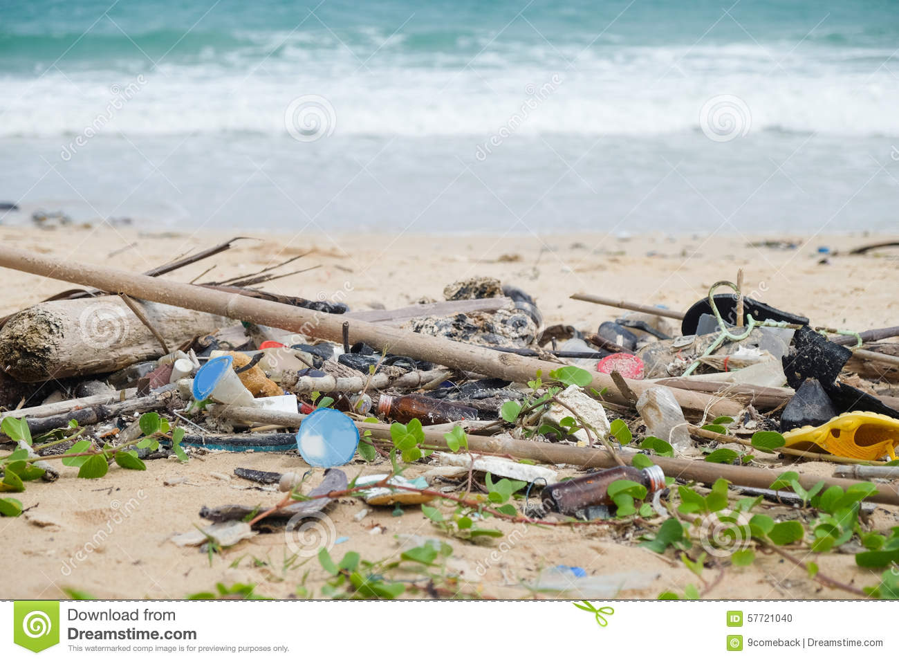 causes of garbage pollution Waste is constantly contaminating our waters there are many causes that contribute to water pollution here are all of the water pollution facts.