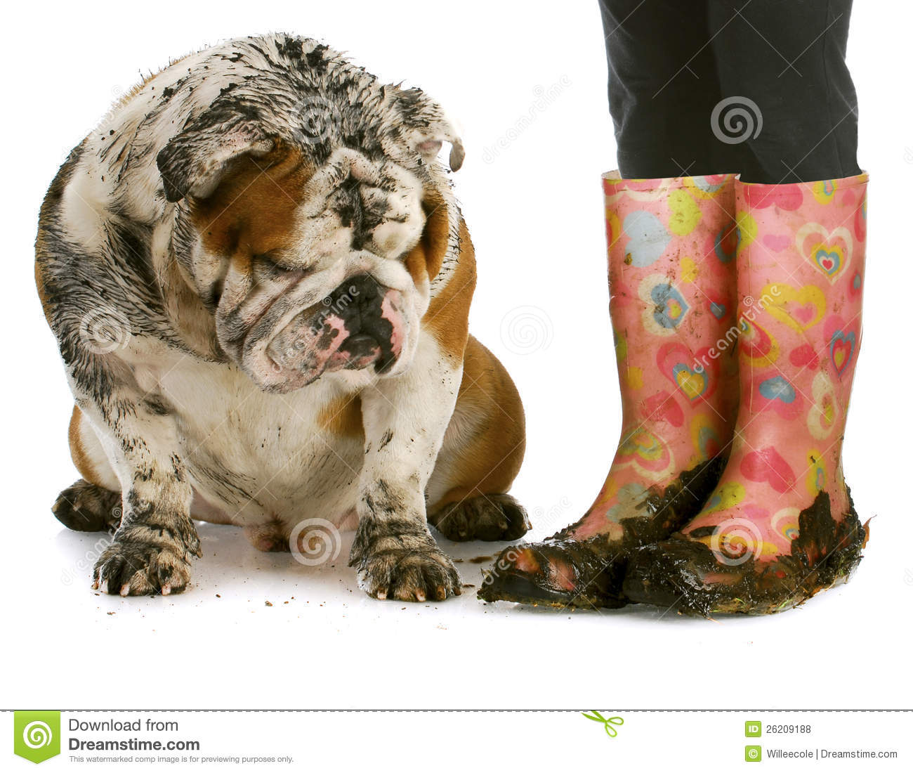 Dirty Boots And Dog Royalty Free Stock Photos
