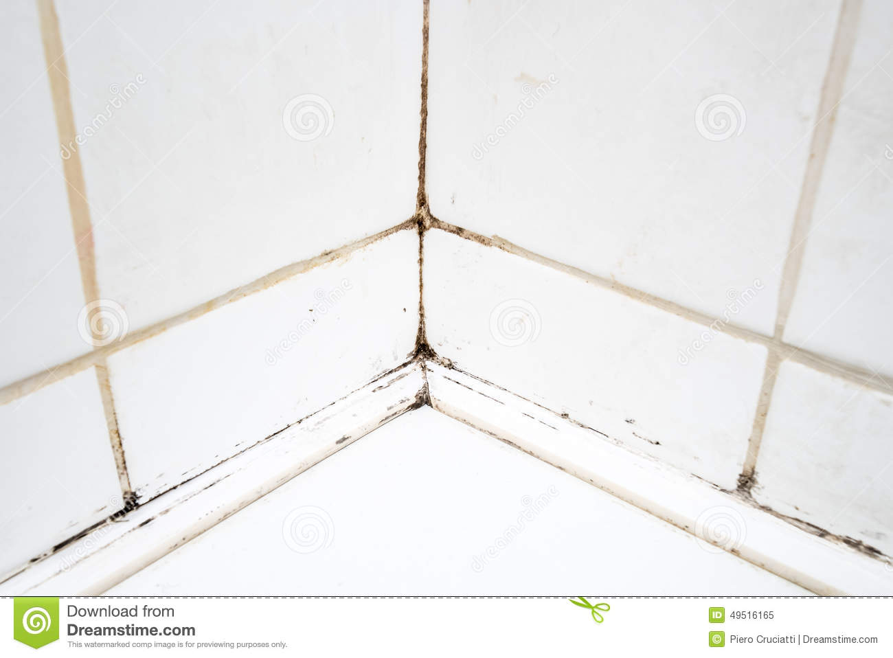 Dirty Tiles In Bathroom Shower Stock Image - Image of joint, dirty ...
