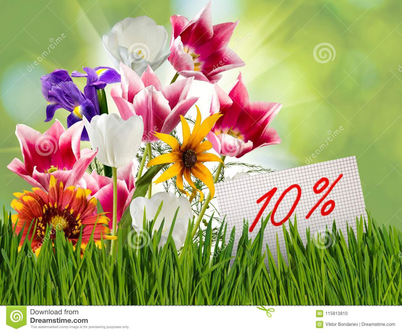 Discount For Sale 10 Percent Discount Beautiful Flowers Tulips In