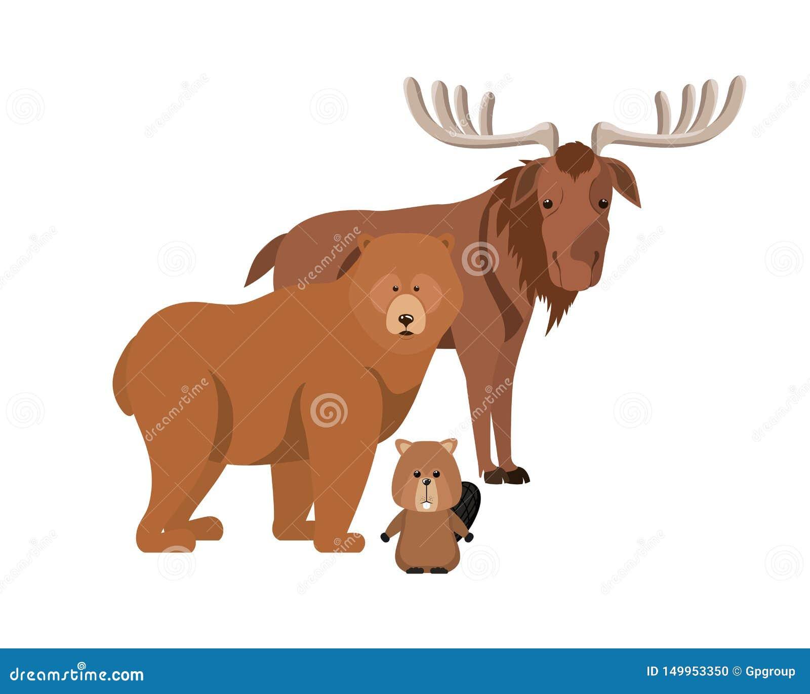 Diseño animal aislado del castor y del oso de los alces