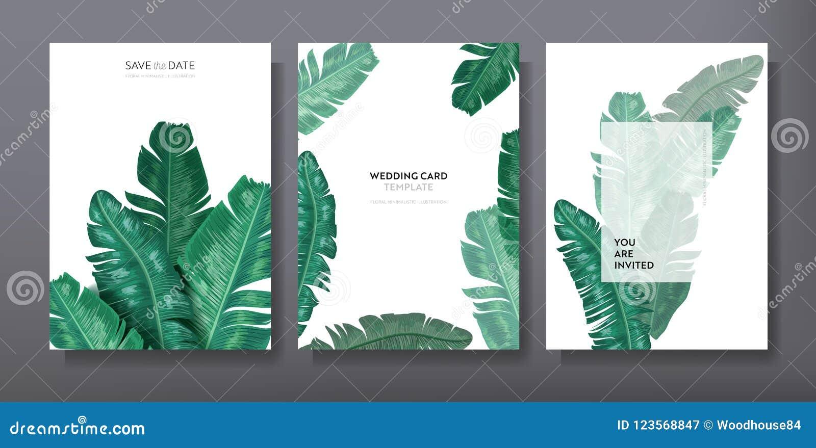 Diseño de moda tropical de la plantilla de la tarjeta del saludo o de la invitación, sistema del cartel, aviador, folleto, cubier