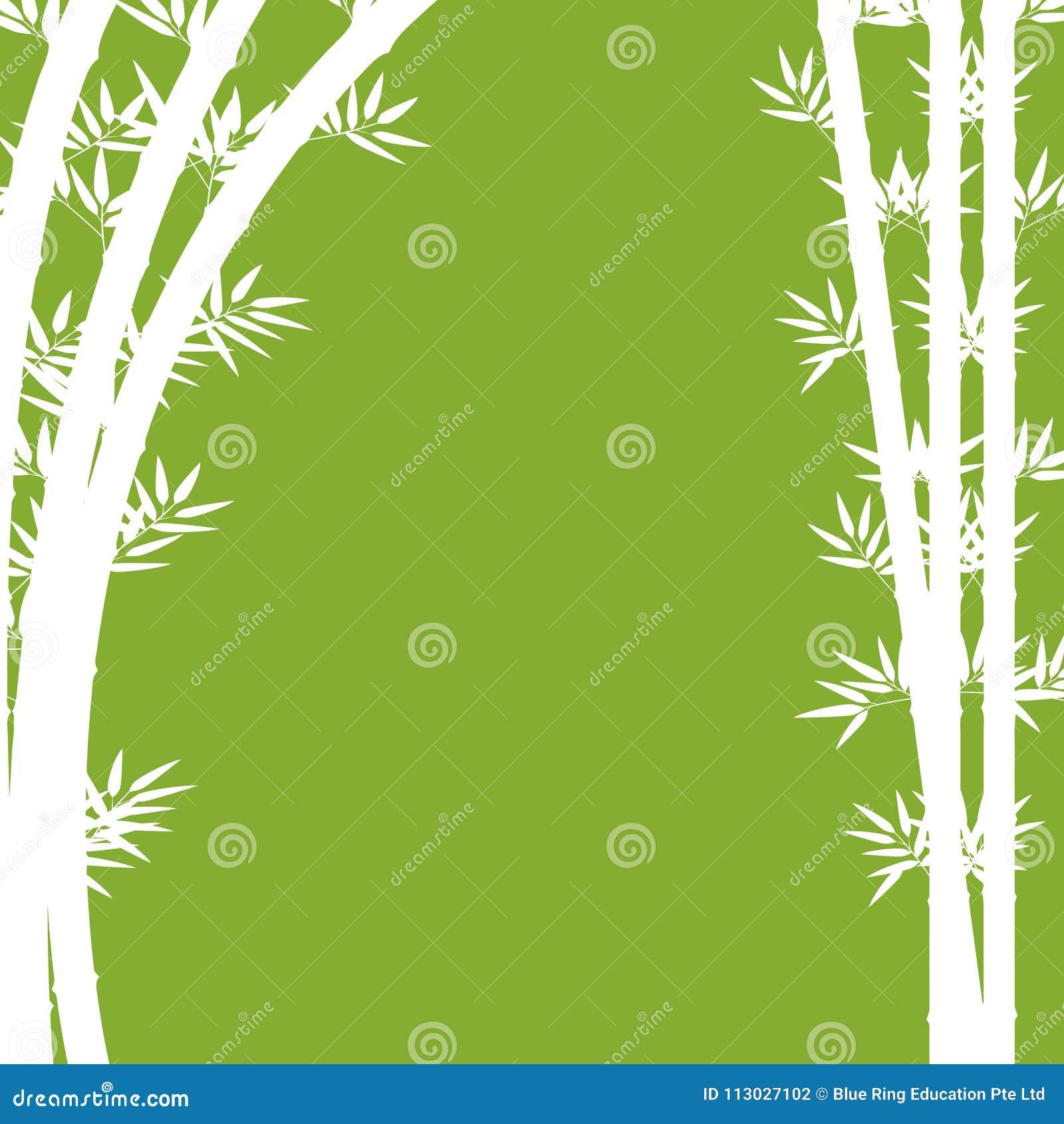 Diseño del fondo con el bambú blanco en verde