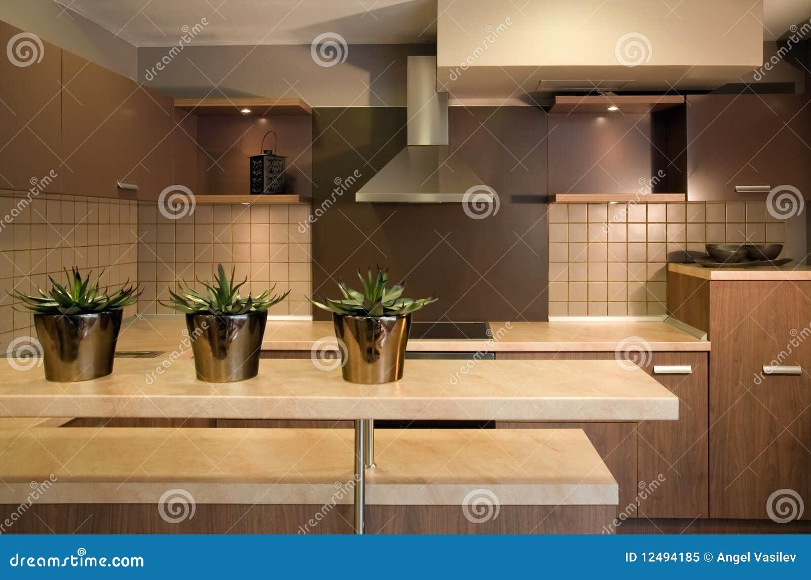 Dise o interior de la cocina elegante y de lujo foto de - Diseno de fotos ...