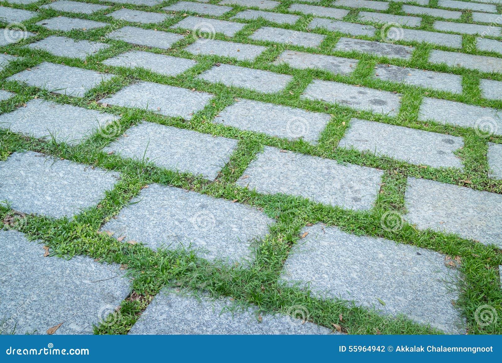 Dise o moderno de piso de la hierba foto de archivo - Pisos de diseno en barcelona ...