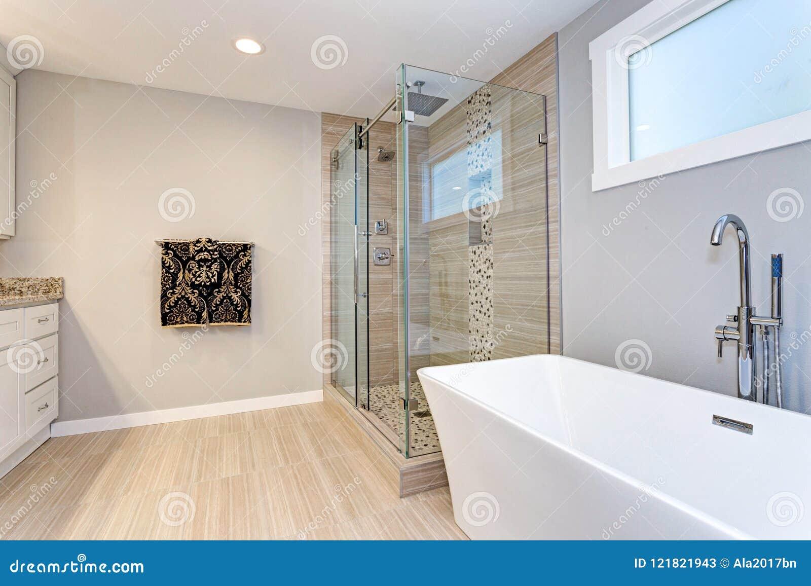 Diseño Moderno Ligero Del Cuarto De Baño Con El Paseo En Ducha ...
