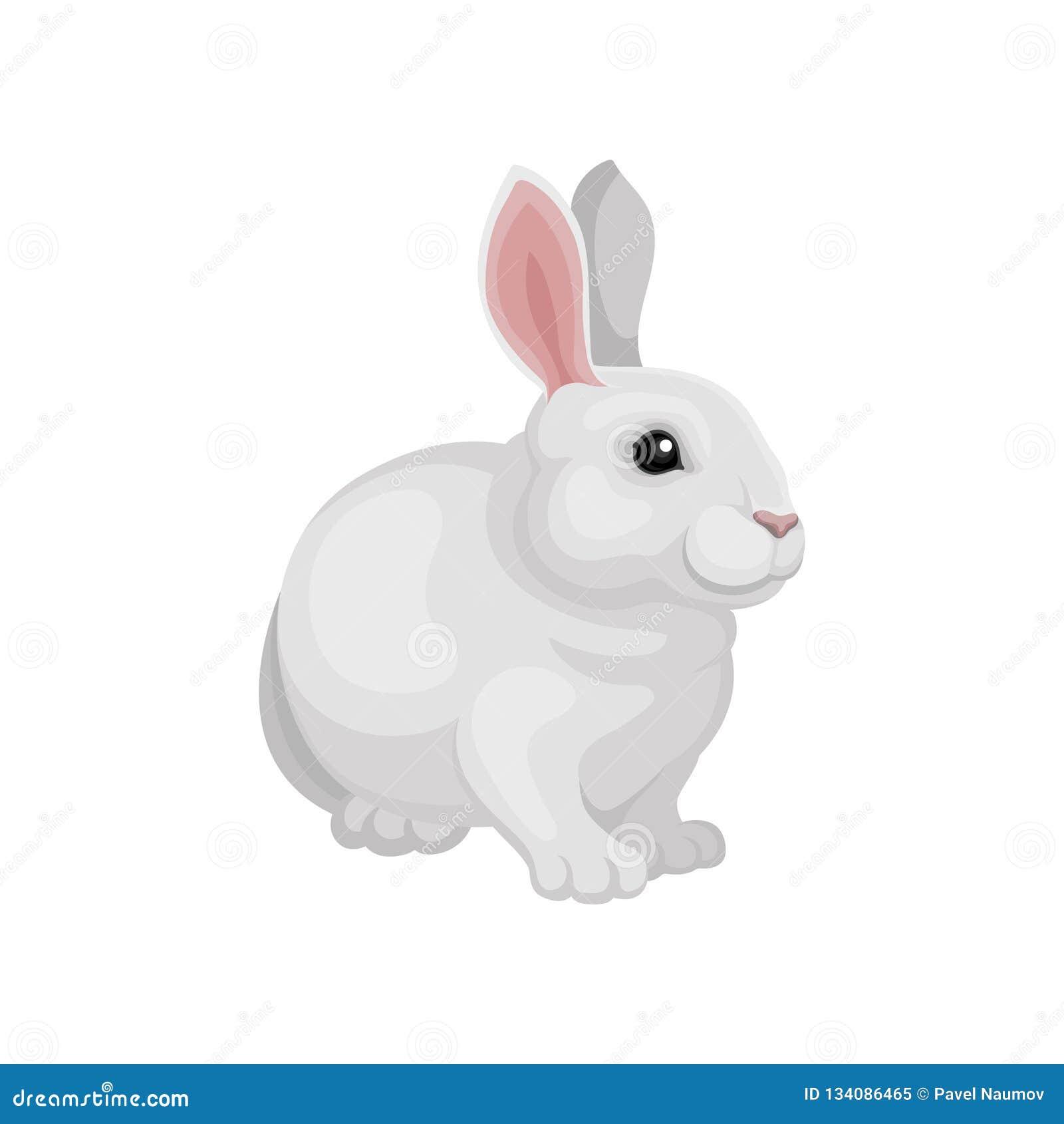 Diseño plano del vector de conejo adorable Animal lindo del mamífero Conejito blanco con los oídos rosados largos Animal doméstic