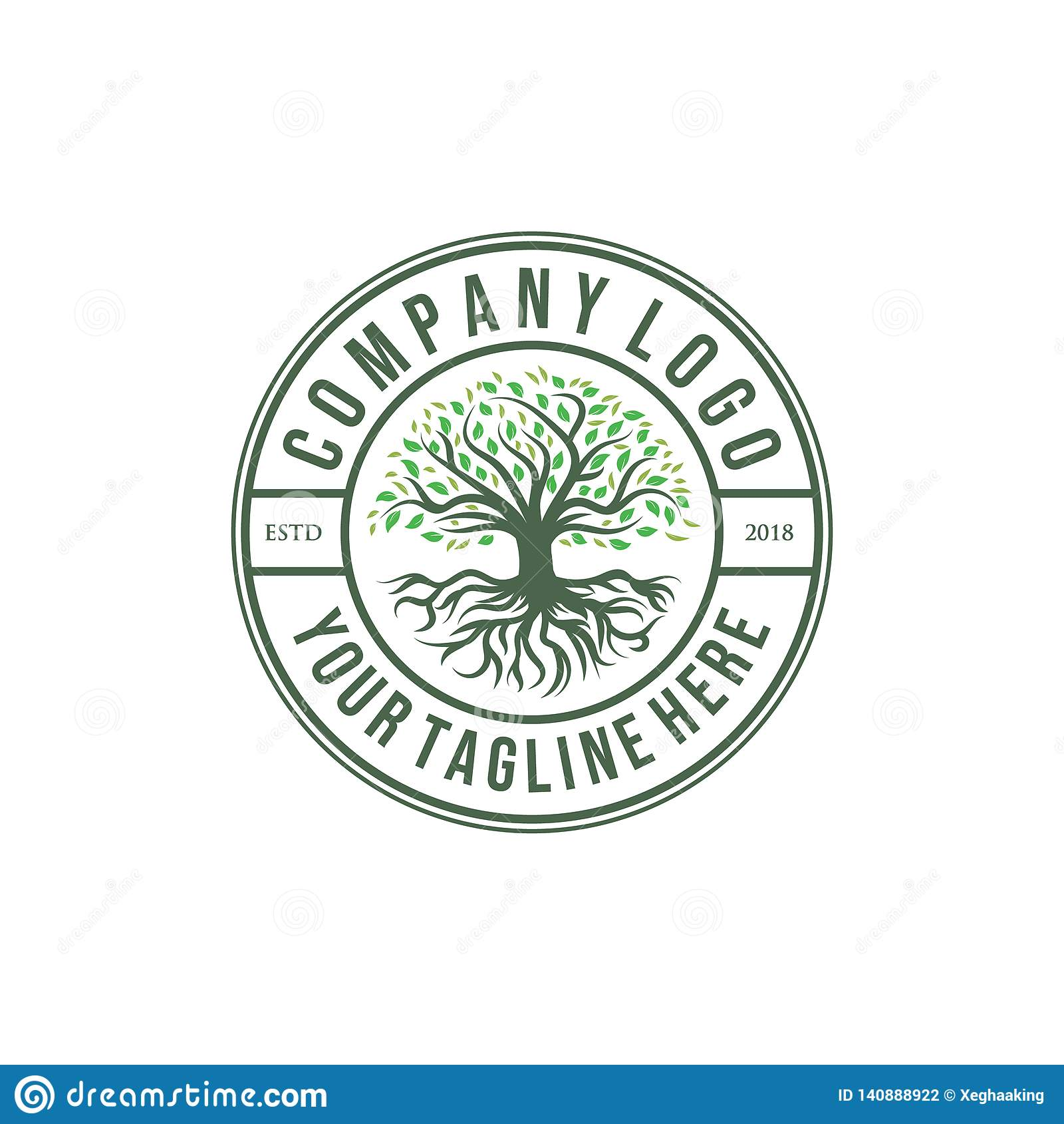 Diseños del logotipo de la aceituna o del roble, estilo del vintage