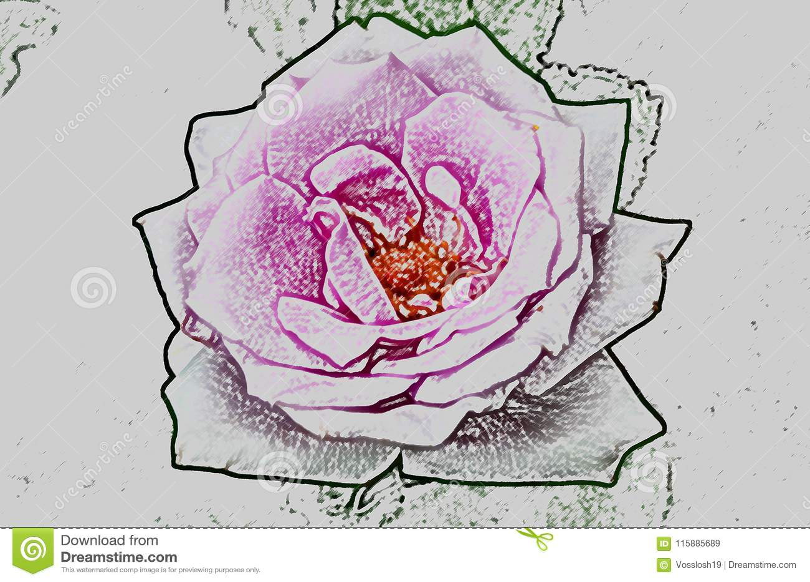 Disegno Astratto Di Un Fiore Di Una Rosa Imitante Disegno Da Una