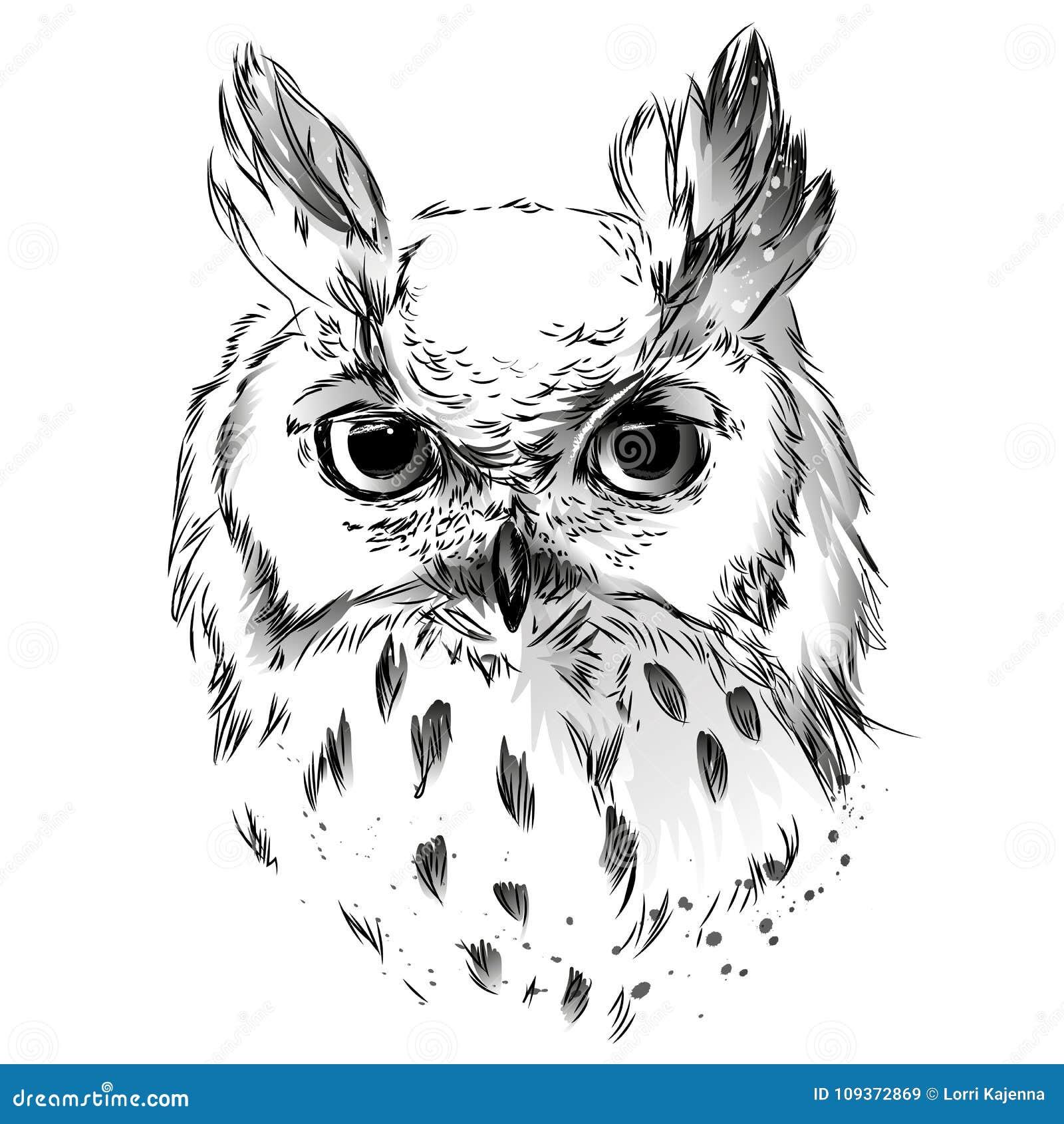 Disegno In Bianco E Nero Capo Del S Del Gufo Illustrazione