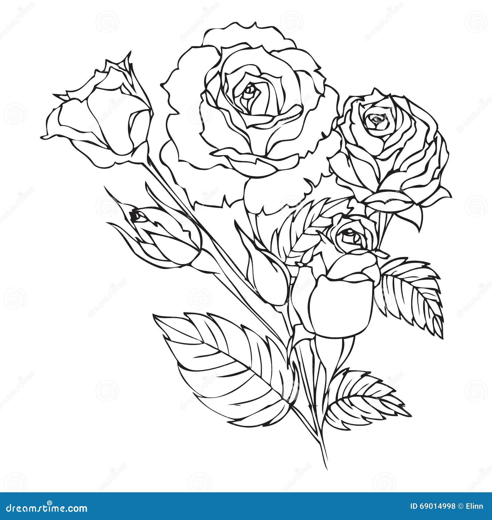 Disegno Di Contorno Delle Rose Illustrazione Di Stock