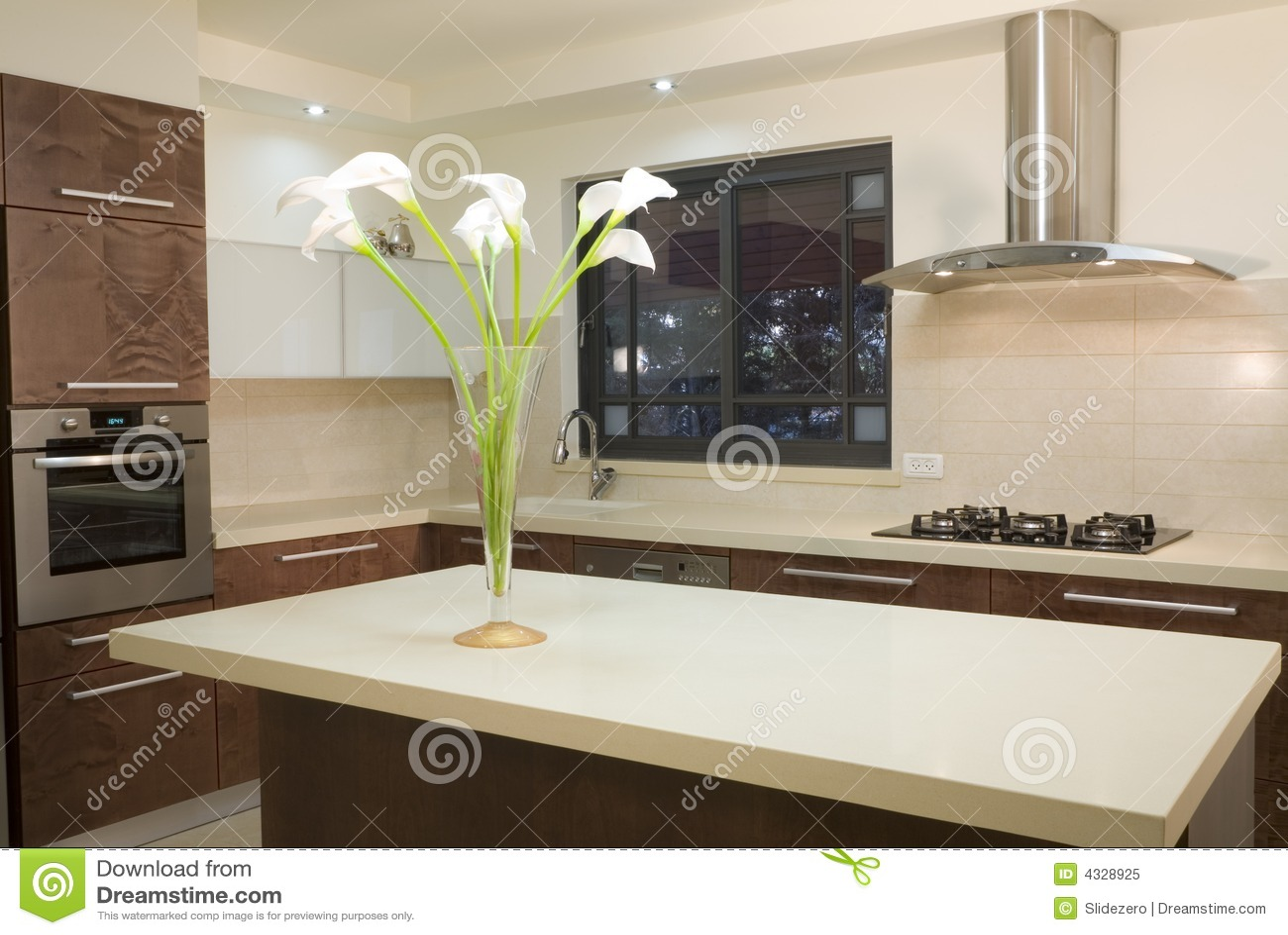 Disegno di lusso della cucina immagine stock immagine di for Disegno cucina