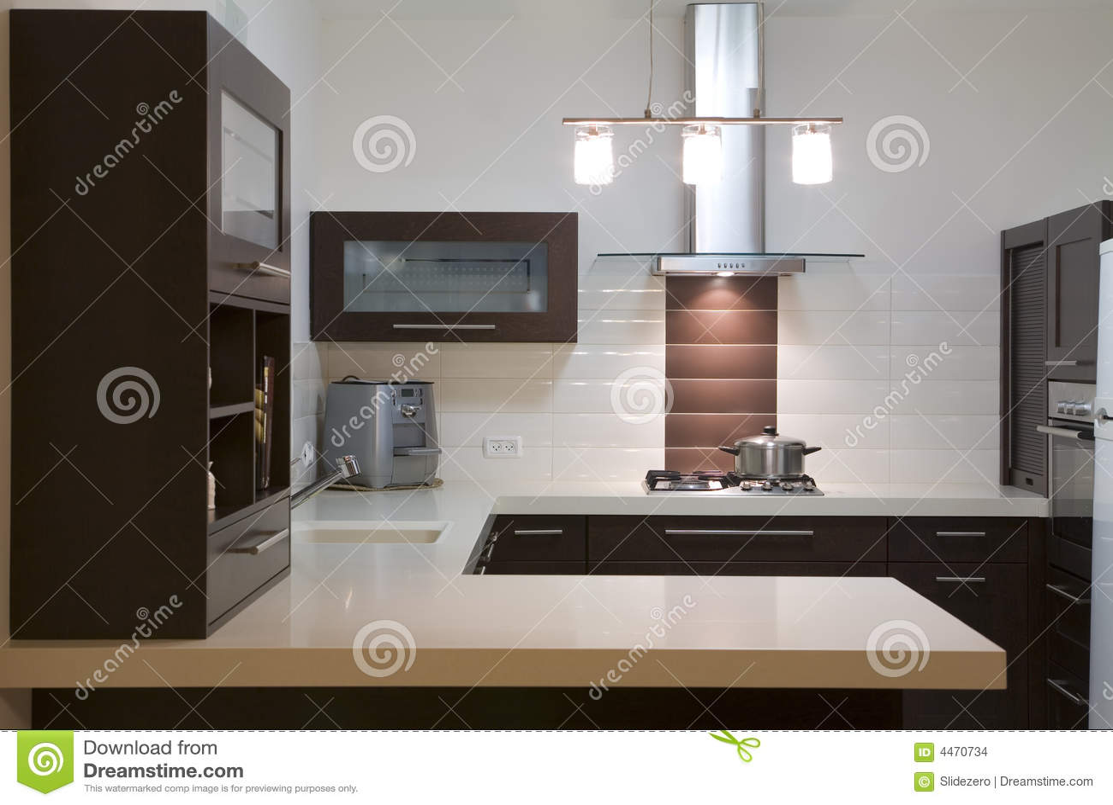 Disegno di lusso della cucina
