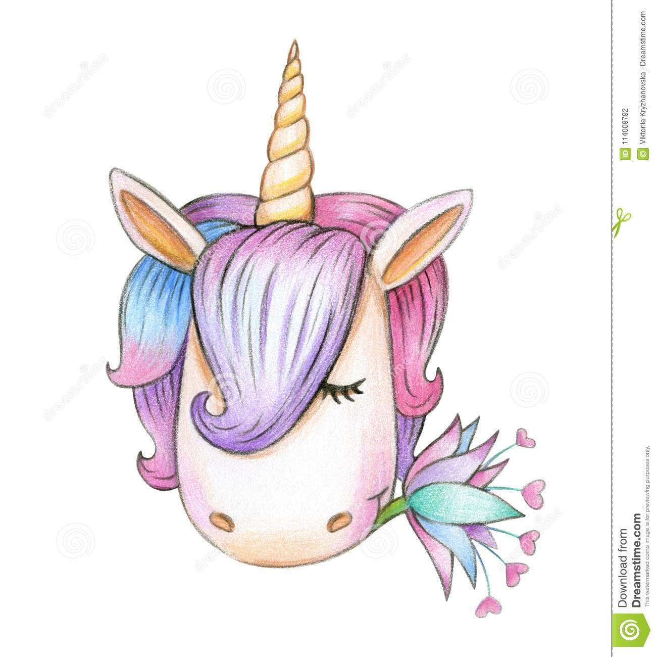 Disegni Unicorno Download Stock Disegni Di Unicorni Colorati Usitv