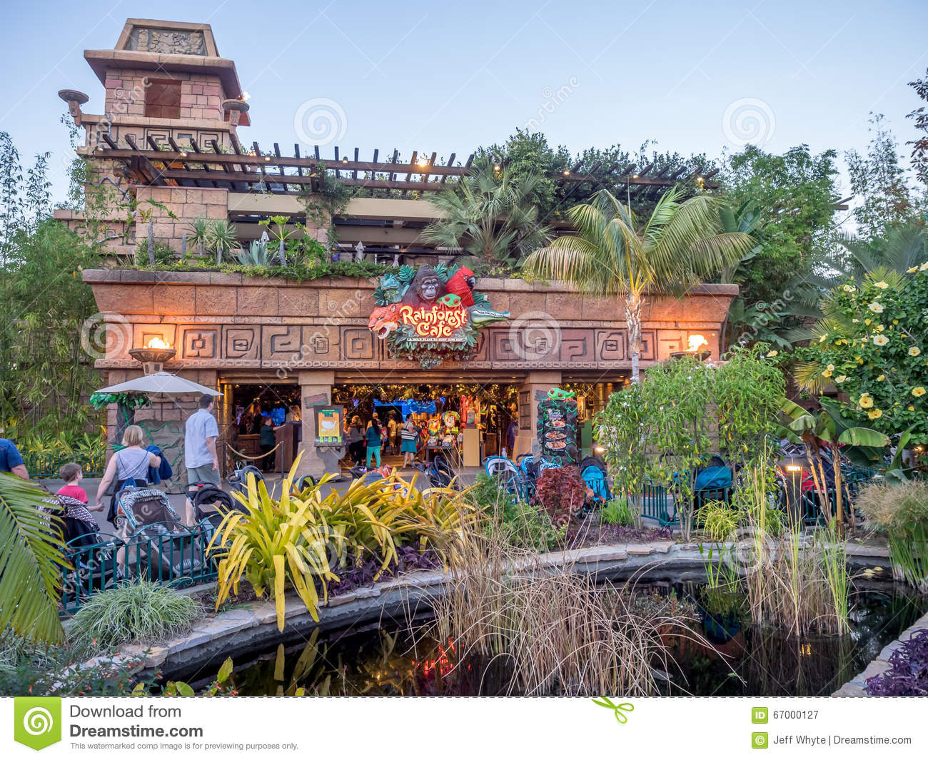 Downtown Disney Rainforest Cafe
