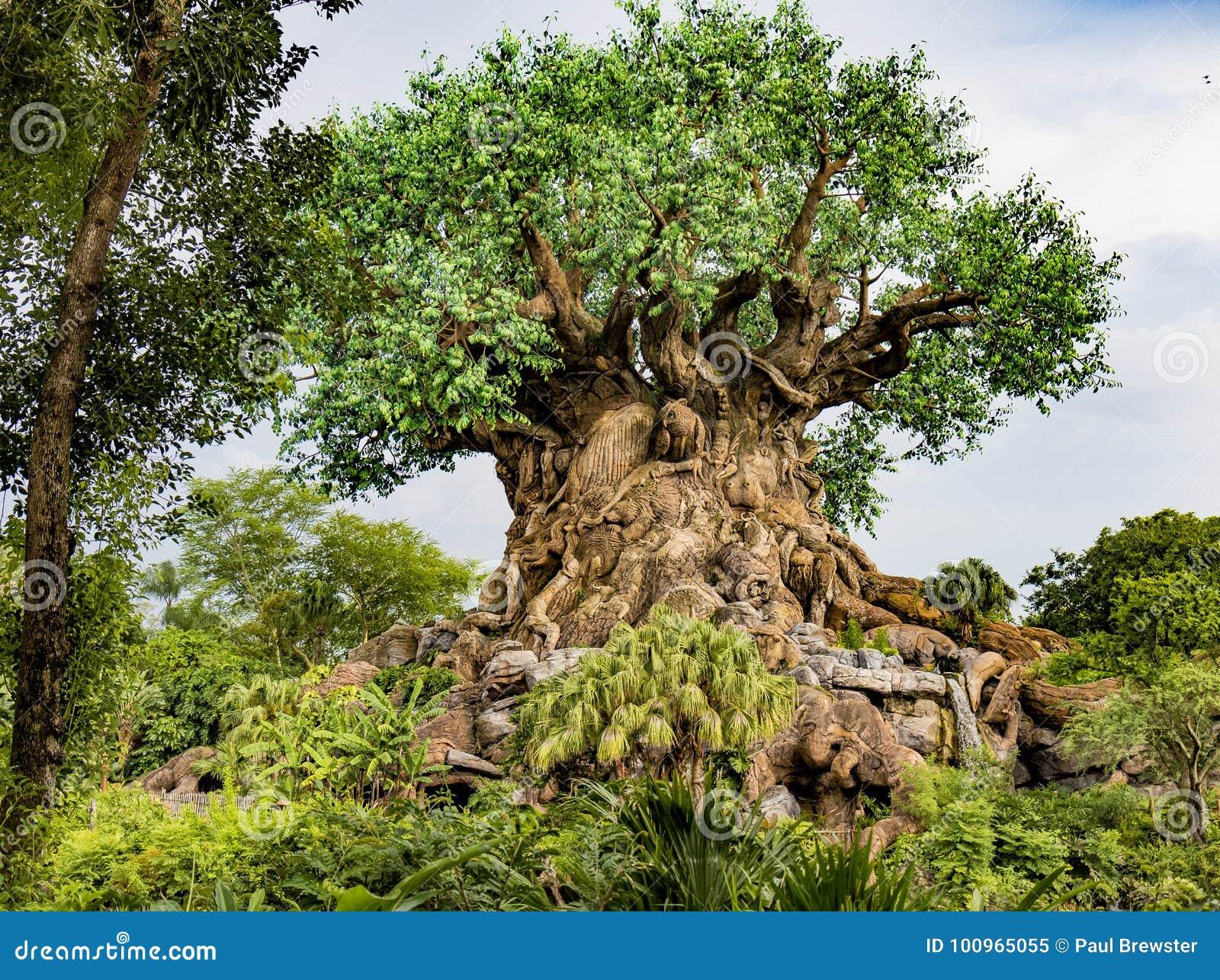 Disney world orlando florida animal kingdom tree of life editorial