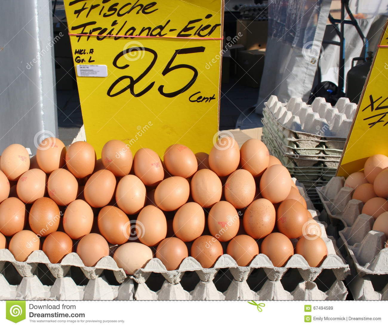 Display Of Organic Brown Eggs Stock Image Image Of Chicken Crate 67494589