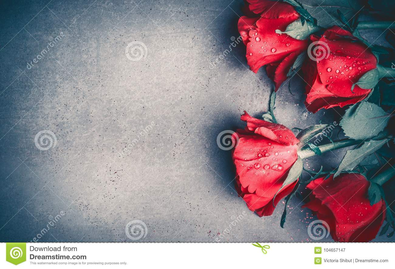 Disposição das rosas vermelhas no fundo cinzento do desktop, vista superior Dia de Valentim, cartão datar e de amor, aniversário
