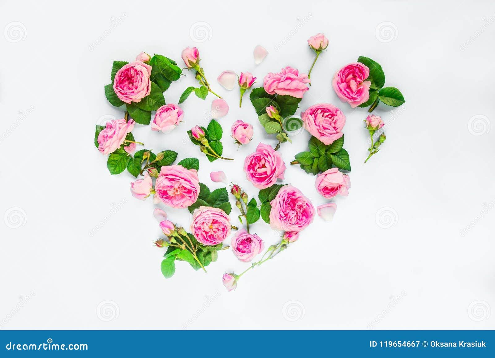Disposizione creativa con i fiori rosa, i petali e le foglie del tè rosa nella forma di cuore su fondo bianco isolato Estate, amo