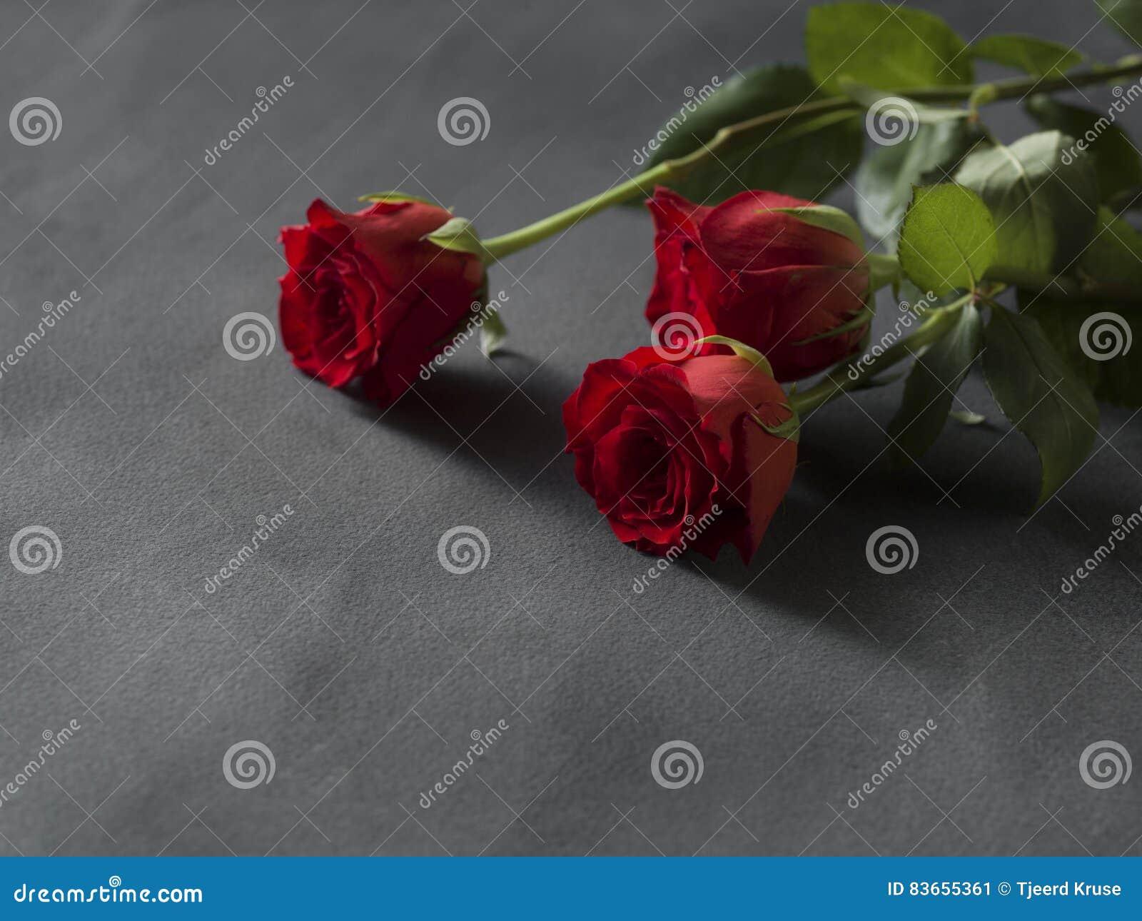 Disposizione delle rose rosse per un grey di funerale