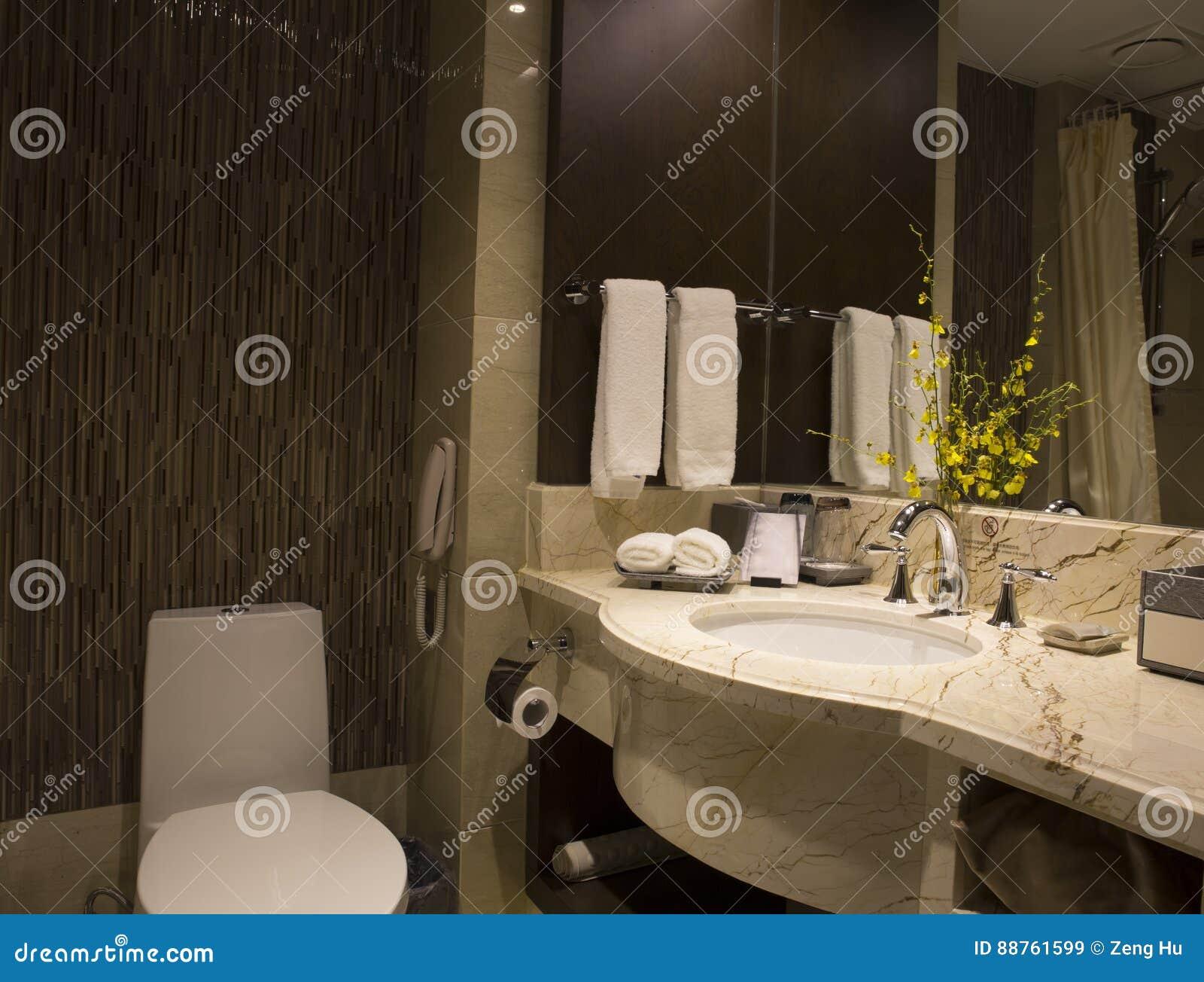 Disposizione Moderna Del Bagno Immagine Stock - Immagine di bathtubs ...