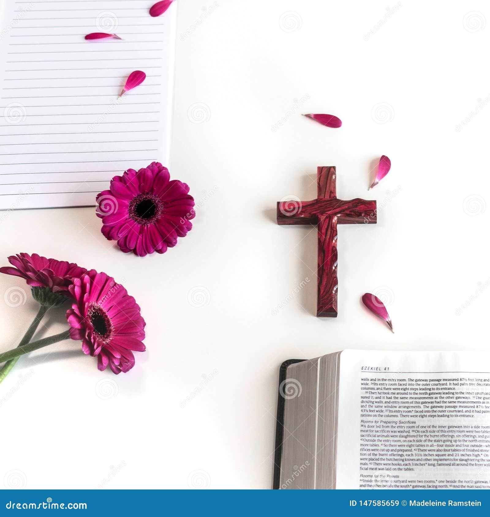 Disposizione piana: bibbia aperta, libro, incrocio di legno e rosa, porpora, violette, fiore rosso della gerbera con i petali