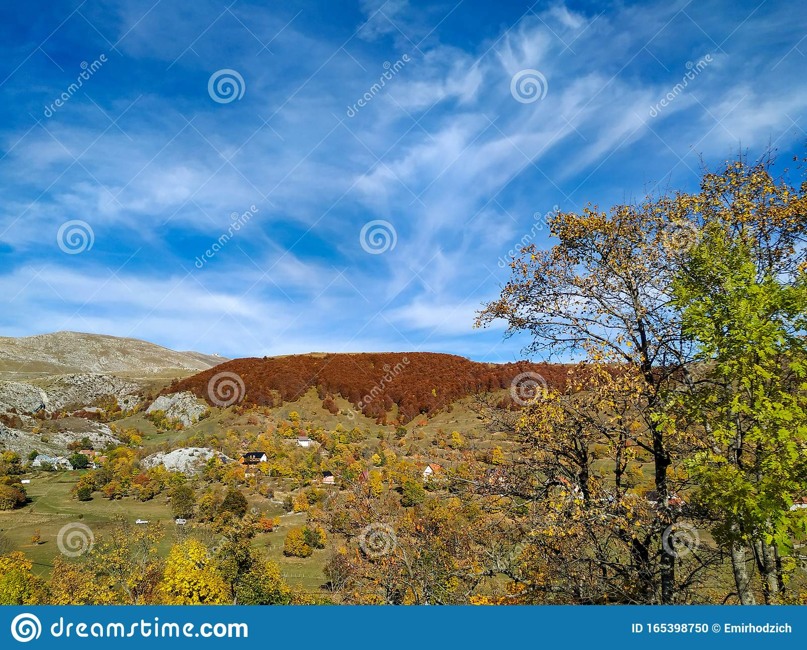 Distant Red Forest On A Hill With A View Of Natural Environment As A Beautiful Autumn Colorful Wallpaper For Stress And Anxiety Stock Photo Image Of Countryside Climb 165398750