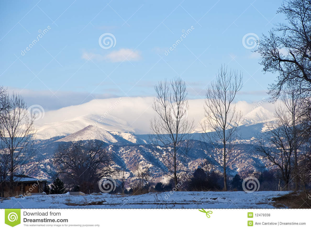 Distant Snowy Mountains With Foreground