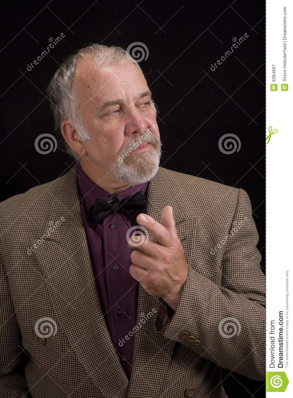 Distinguised Older Man Royalty Free Stock Photography ...