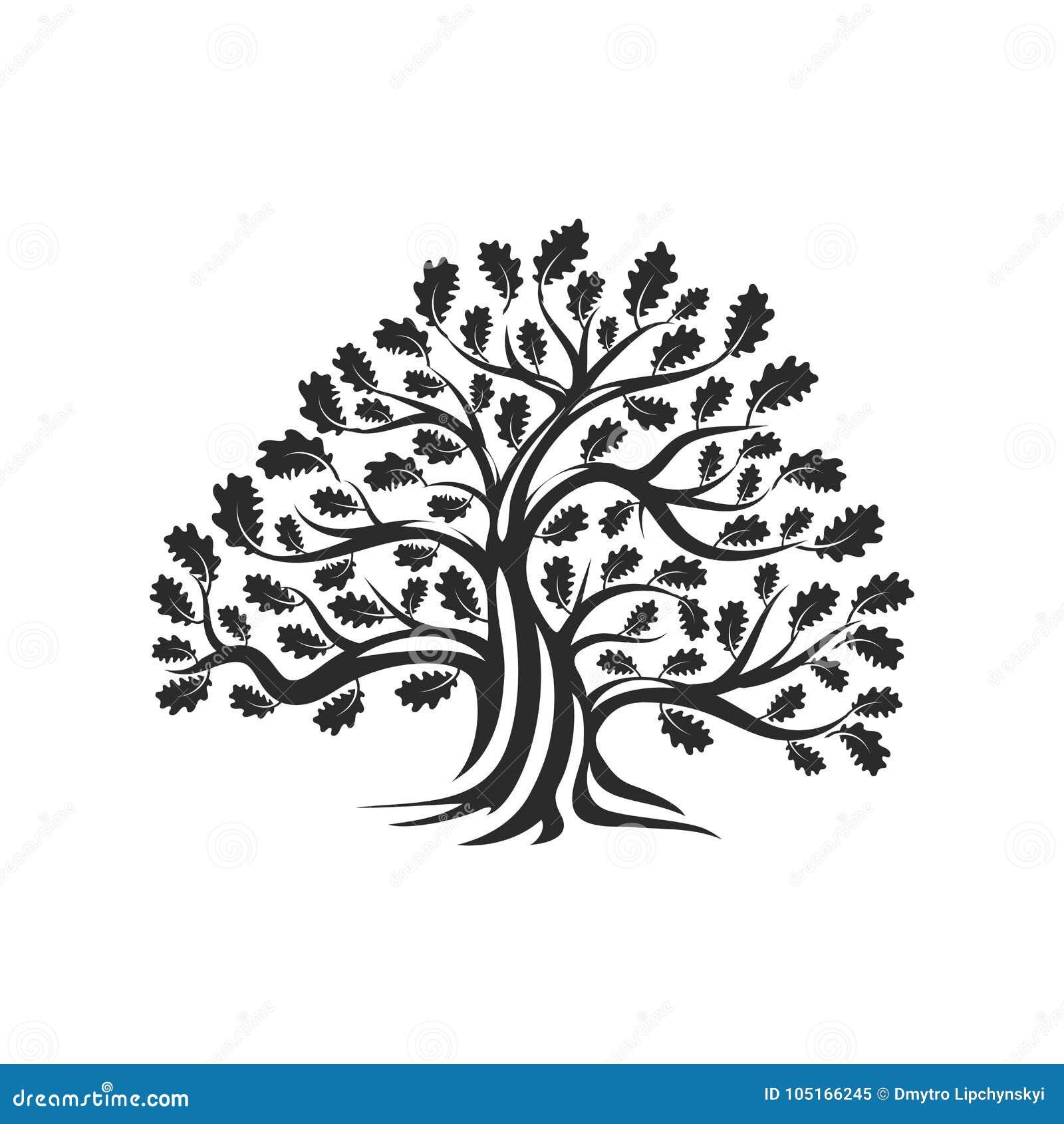 Distintivo enorme e sacro di logo della siluetta della quercia isolato su fondo bianco