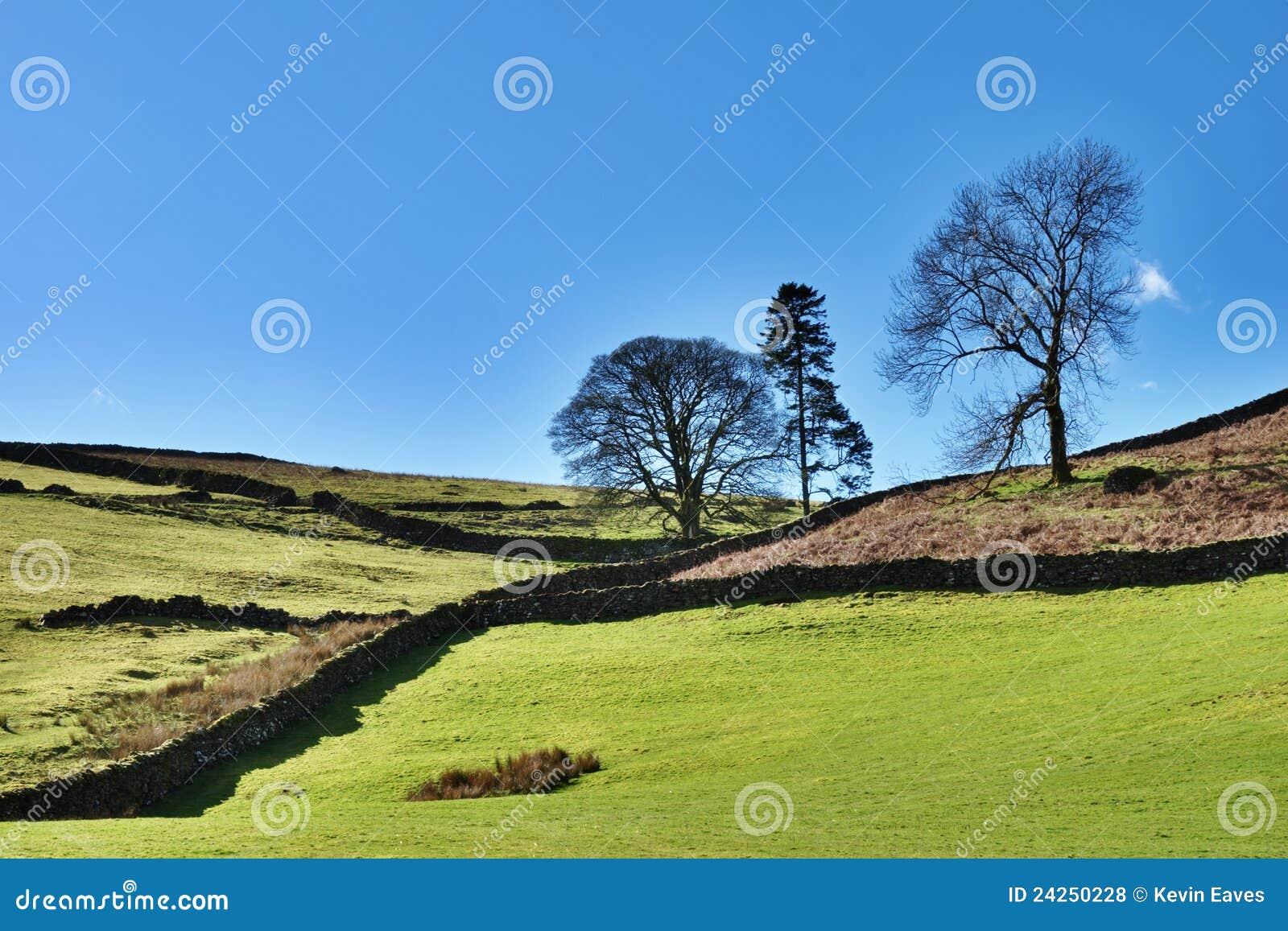 Districto inglés del lago farmland agrícolas