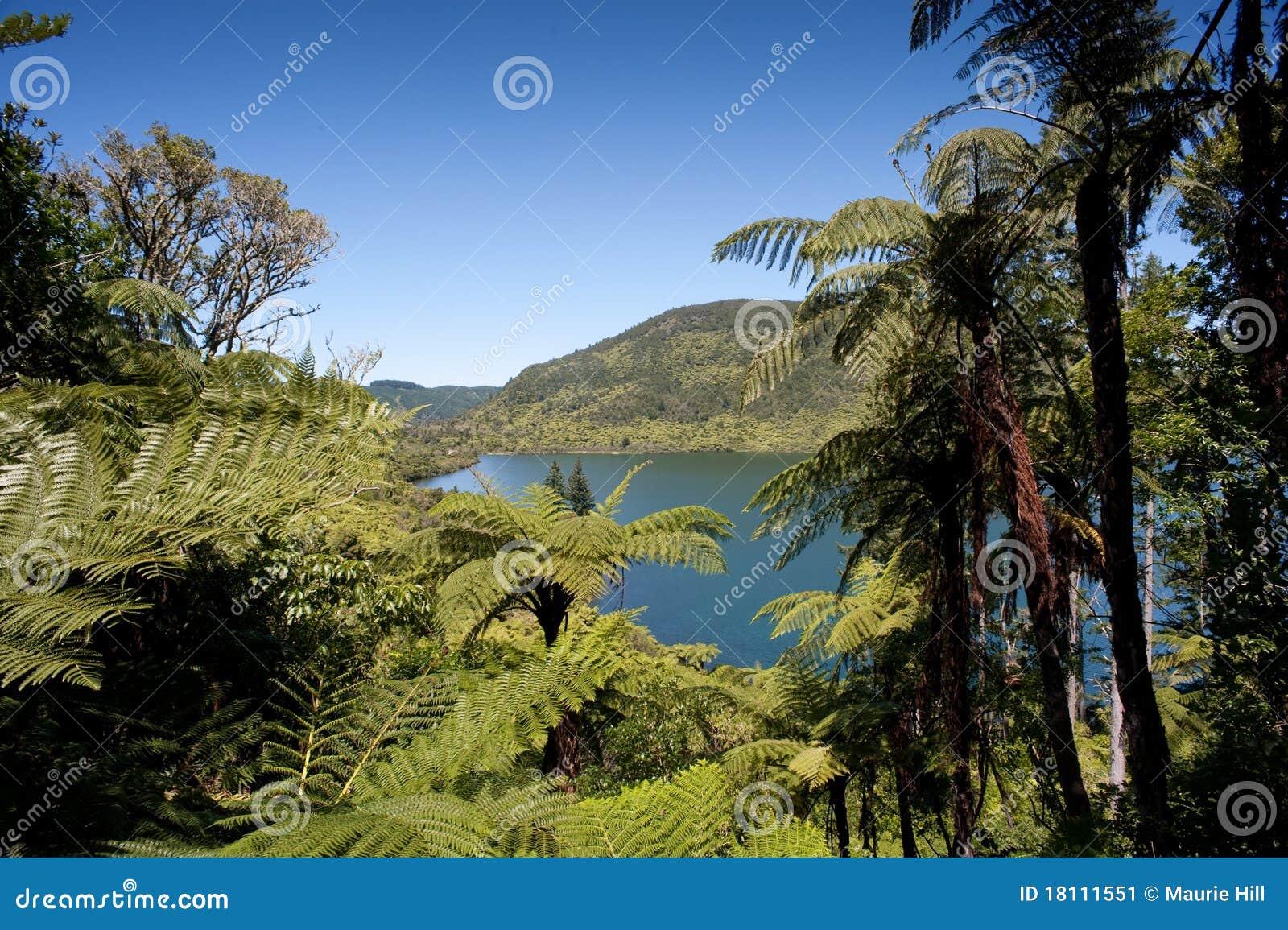 Distrito dos lagos Rotorua