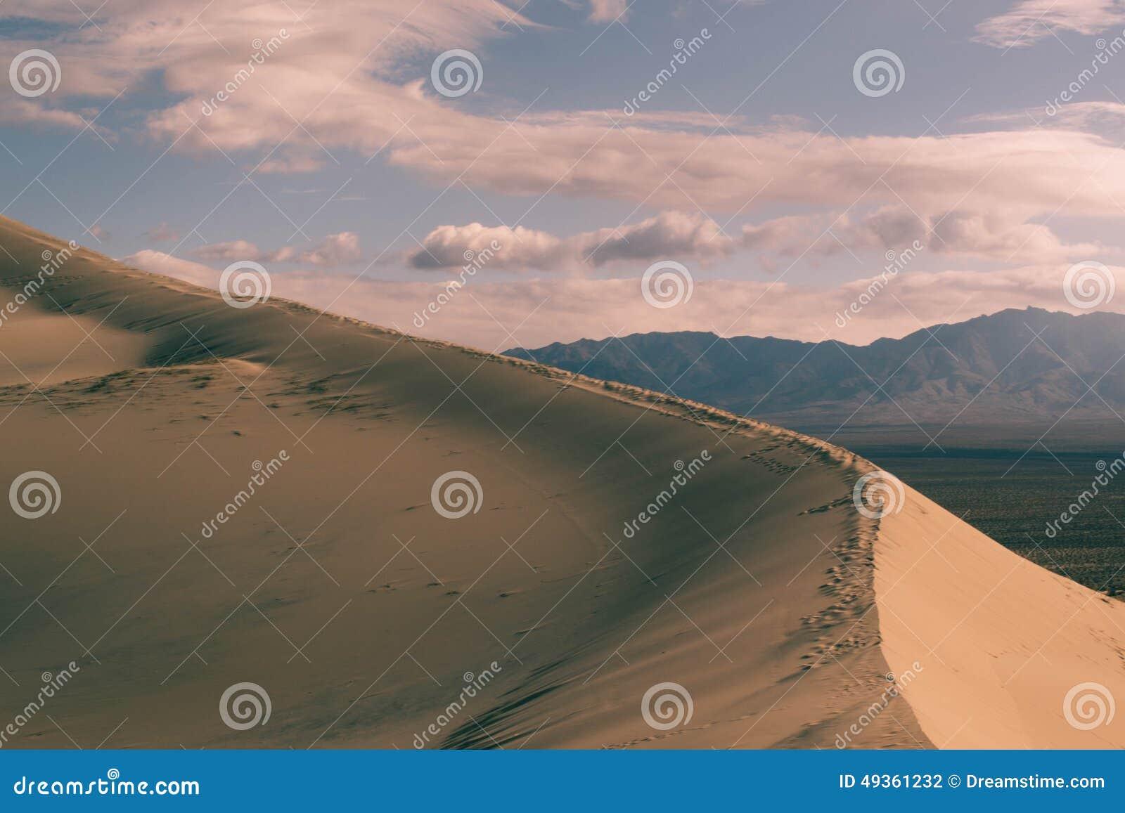 Diun horyzontu kosa kurshskaya Russia piasek kroczy rozciąganie
