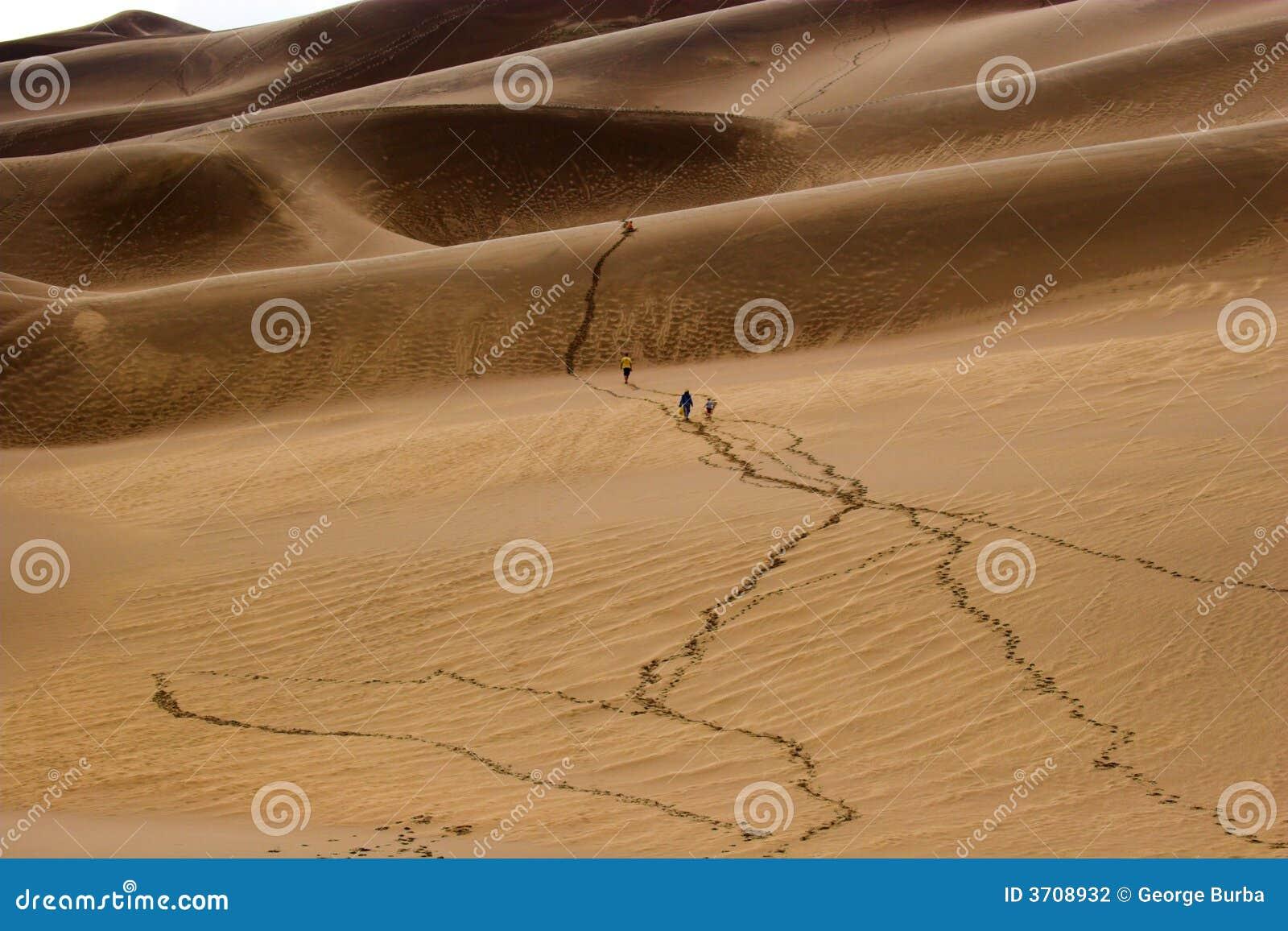 Diuna piasek chodzącym ludzi