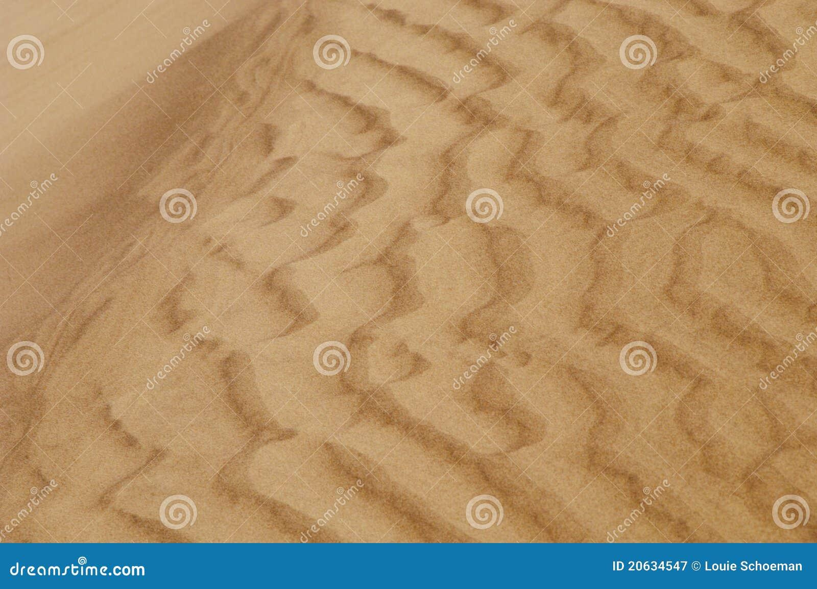Diuny pluskoczący piasek