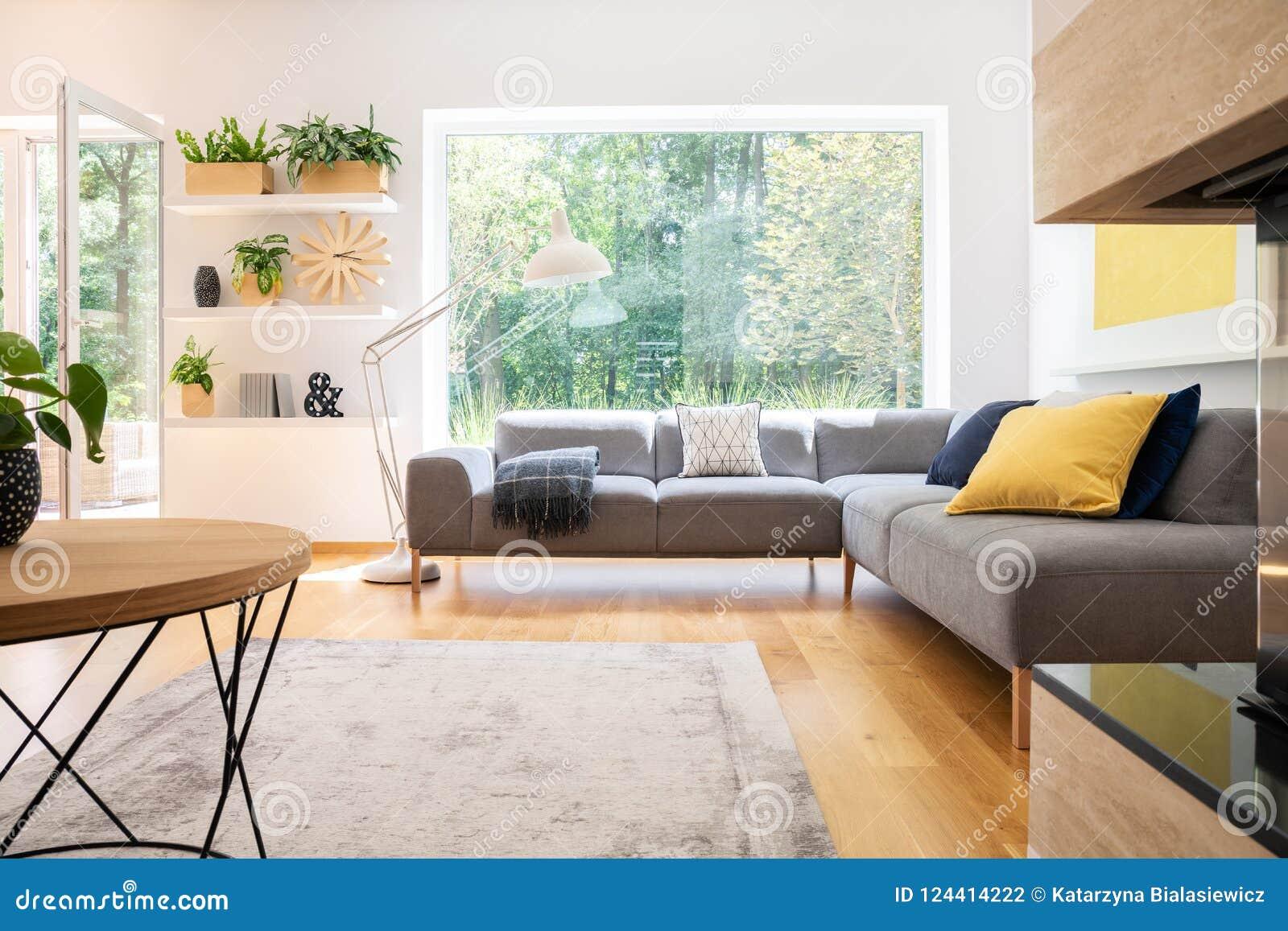 Divan faisant le coin gris avec des coussins en vraie photo de l intérieur blanc de salon avec la fenêtre, les usines fraîches, l